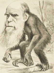 Evolution's Fatal Flaw: Lack of Fossil Evidence