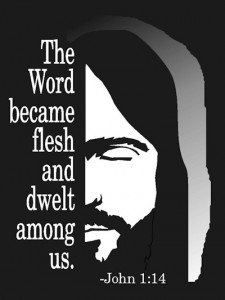 Is Jesus God in the flesh? Why is it important that Jesus is God in the flesh?