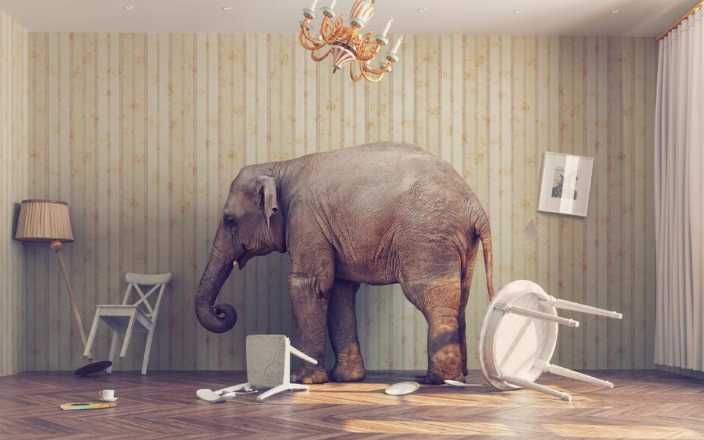 The Elephant in the Room: Competing Worldviews and Religions Can't All Be True