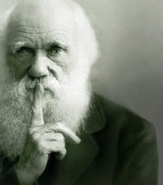 The Impotence of Darwinism: A Christian Scientist Looks at the Evidence